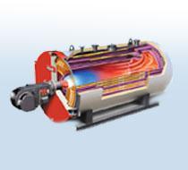 燃油/燃气导热油炉