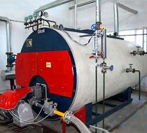 卧式燃气(燃油)导热油炉